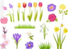 1 Actie voorjaars kriebels